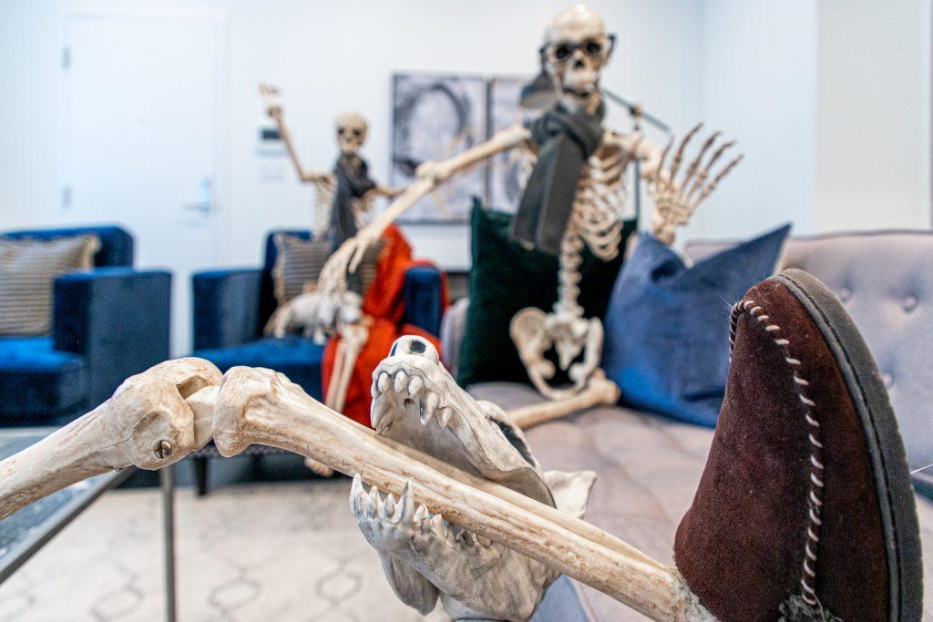 «скелети в шафі», фото: © Donna Kerr Group