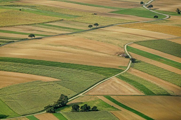 купити та продати с/г землю, купить и продать с/х землю